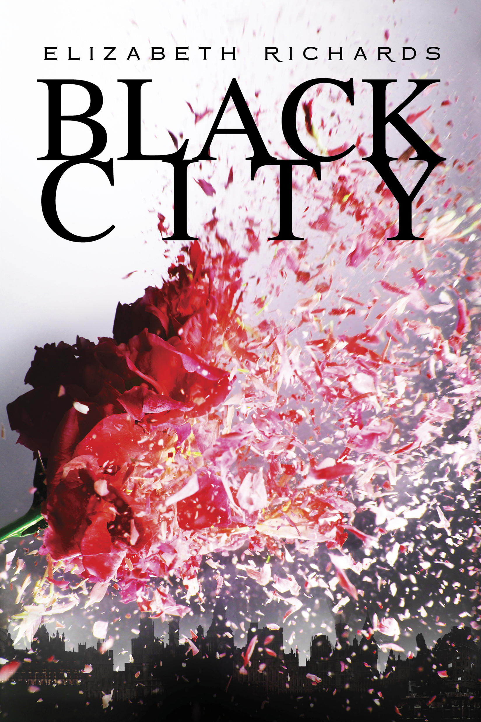 Review: Black City by Elizabeth Richards